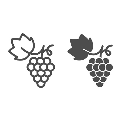 Bunch of grapes line and solid icon, summer concept, grapes sign on white background, Bunch of wine grapes with leaf icon in outline style for mobile concept and web design. Vector graphics.