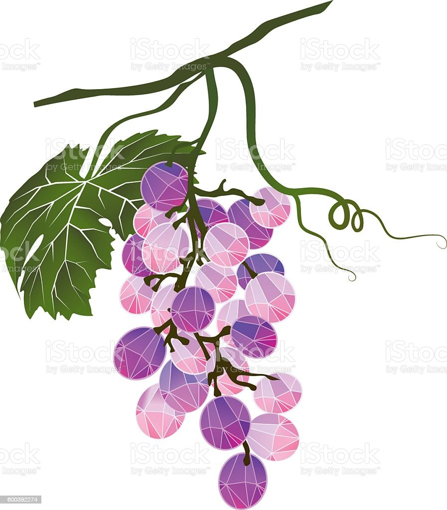 Bunch of grapes stylized polygonal vector art illustration