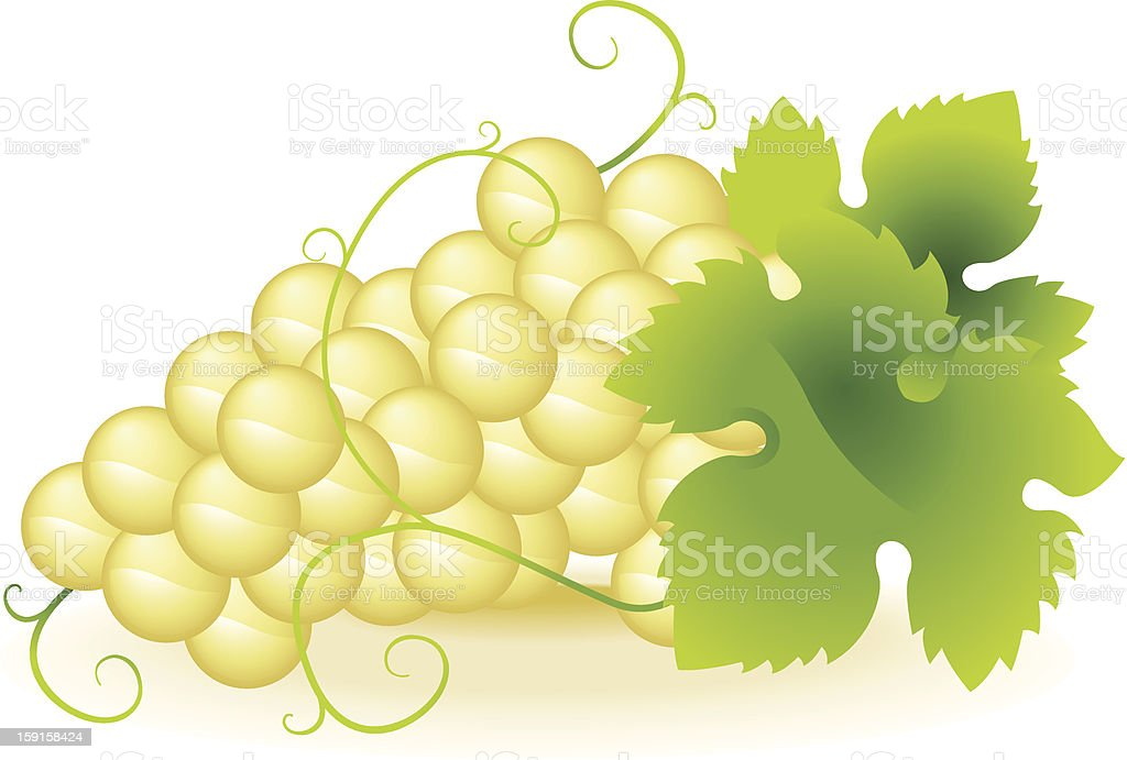 Bunch of grapes royalty-free bunch of grapes stock vector art & more images of agriculture
