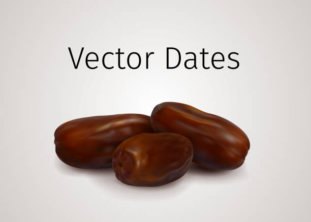 Bunch of Realistic Vector Dates Fruits isolated on white background vector art illustration