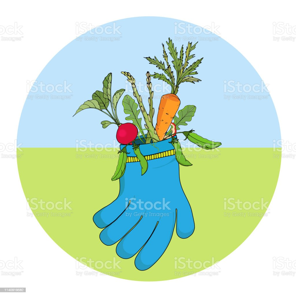 Bекторная иллюстрация A bunch of vegetables, carrots, radishes, asparagus and peas in a garden glove. Vector illustration.