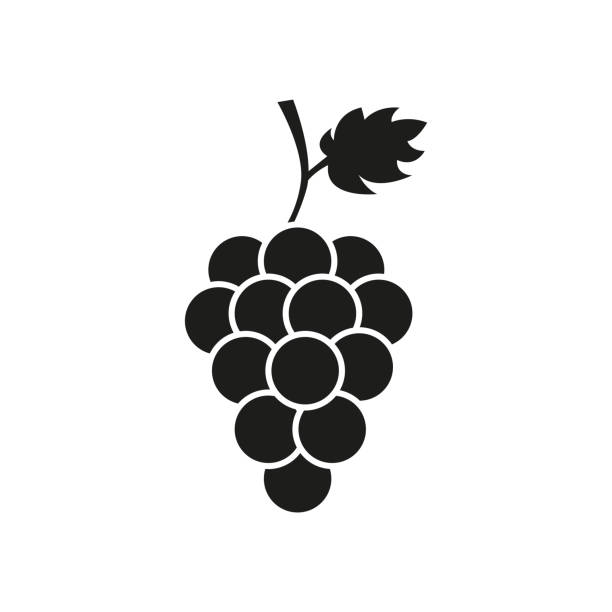 Bunch of wine grapes with leaf Vector illustration bunch stock illustrations