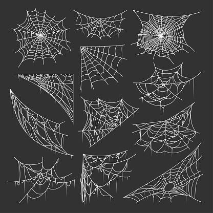 Bundle of spider webs or cobwebs of different shapes