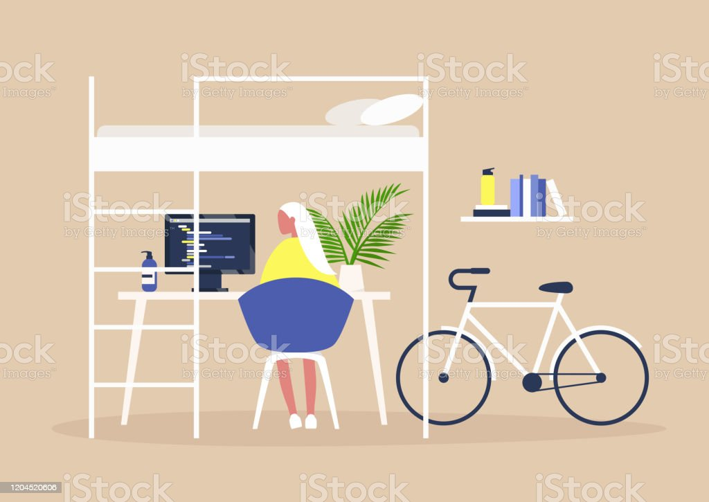 Bunk Bed And A Desk Home Office Interior Millennial Freelancer Lifestyle Young Female Character Working Remotely At Their Apartment Stock Illustration Download Image Now Istock