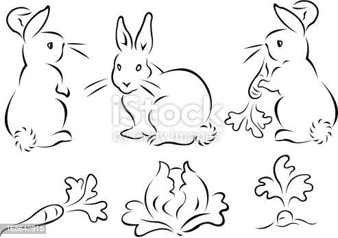 istock Bunnies, Carrots, Cabbage 165642915