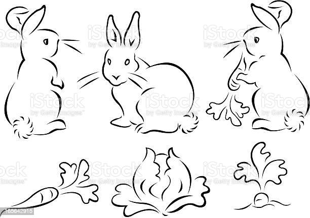 Free rabbit carrot Images, Pictures, and Royalty-Free