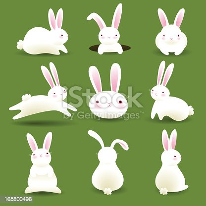 A collection of 9 white bunnies isolated on green