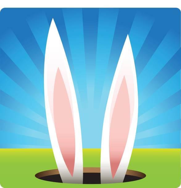 bunny in das loch - kaninchenbau stock-grafiken, -clipart, -cartoons und -symbole