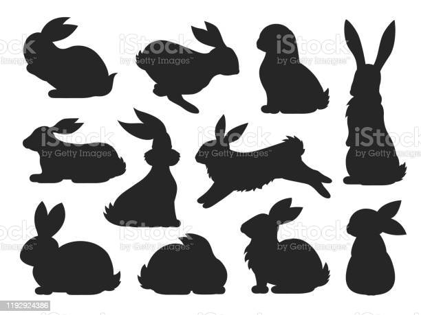 Bunny pet silhouette in different poses hare and rabbit collection vector id1192924386?b=1&k=6&m=1192924386&s=612x612&h=pdeplhgvb54n67msreh4hkqtw0gkw3s4fasbtnckt3o=