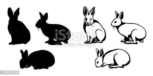 BunnyOneTwoThree