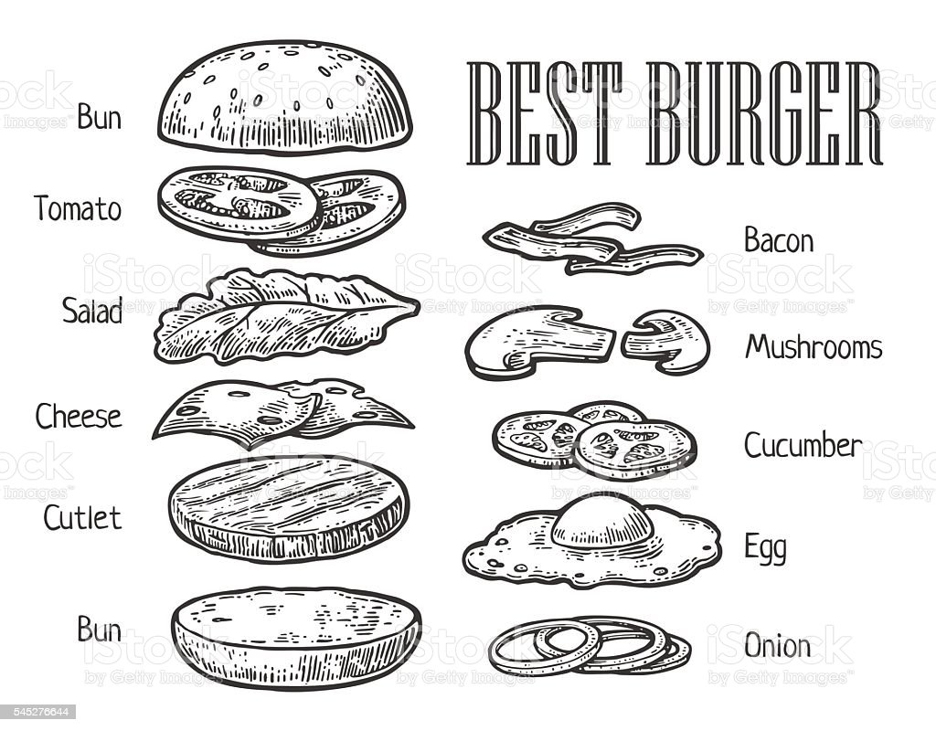 Burger ingredients. Vector vintage engraving illustration for menu - ilustración de arte vectorial