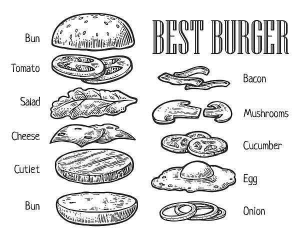 illustrazioni stock, clip art, cartoni animati e icone di tendenza di burger ingredients. vector vintage engraving illustration for menu - hamburger