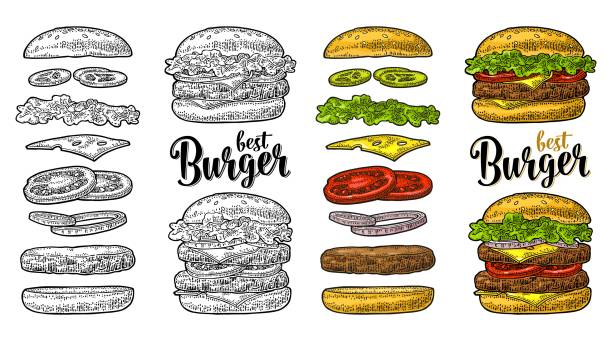 burger with flying ingredients on white background. vector black vintage engraving - lettuce stock illustrations