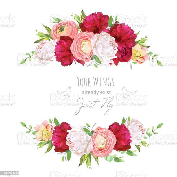 Burgundy red and white peonies pink ranunculus rose vector des vector id666249608?b=1&k=6&m=666249608&s=612x612&h=fb lo4lhc1wijztzudkk9sn7j65esajdknh4jagfu6g=