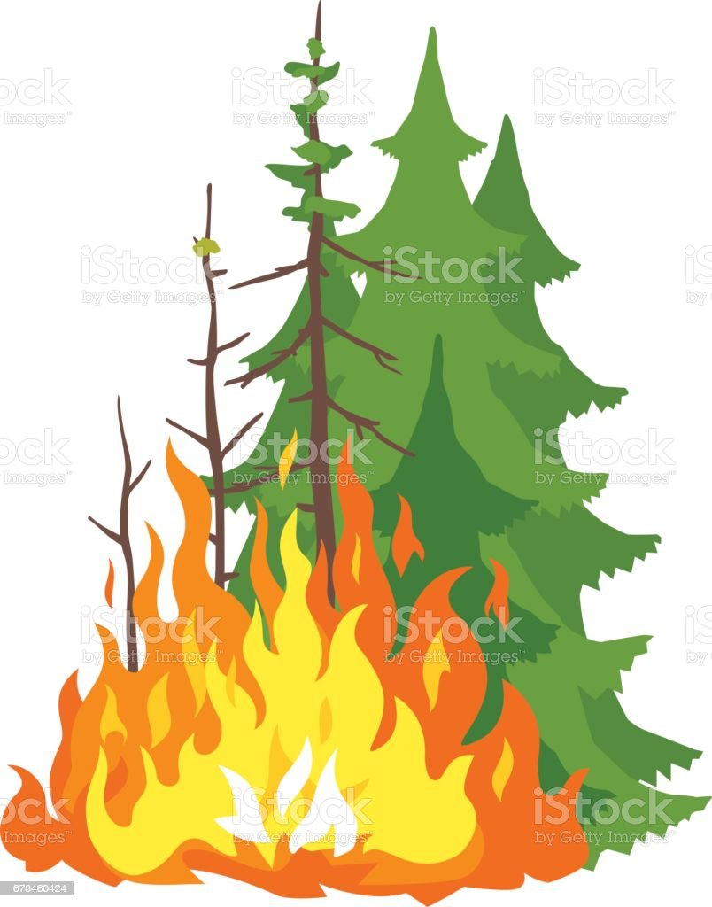 Burning Forest royalty-free burning forest stock vector art & more images of accidents and disasters