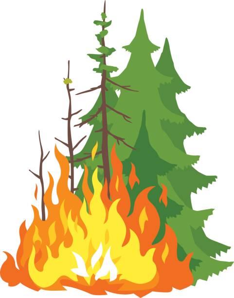 bildbanksillustrationer, clip art samt tecknat material och ikoner med brinnande skog - skog brand