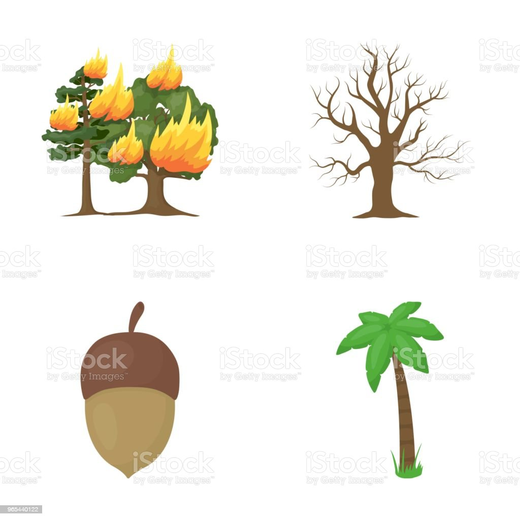 Burning tree, palm, acorn, dry tree.Forest set collection icons in cartoon style vector symbol stock illustration web. royalty-free burning tree palm acorn dry treeforest set collection icons in cartoon style vector symbol stock illustration web stock vector art & more images of acorn