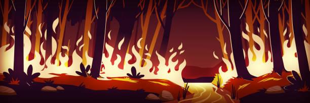 bildbanksillustrationer, clip art samt tecknat material och ikoner med brinnande skogsbrand på natten, brand i skog - skog brand
