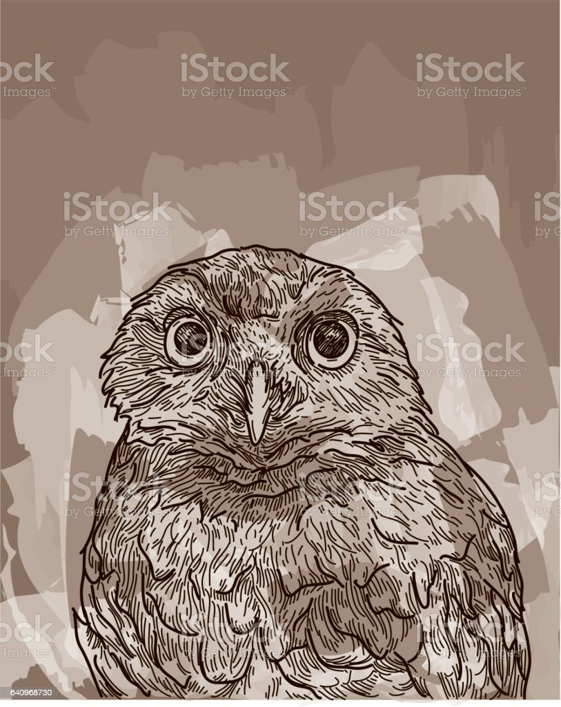 Burrowing Owl vector art illustration