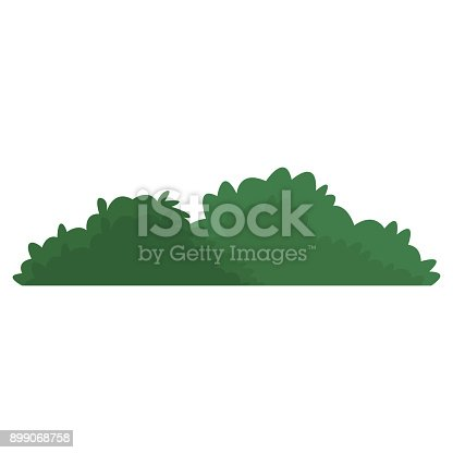 Bush isolated symbol icon vector illustration graphic design