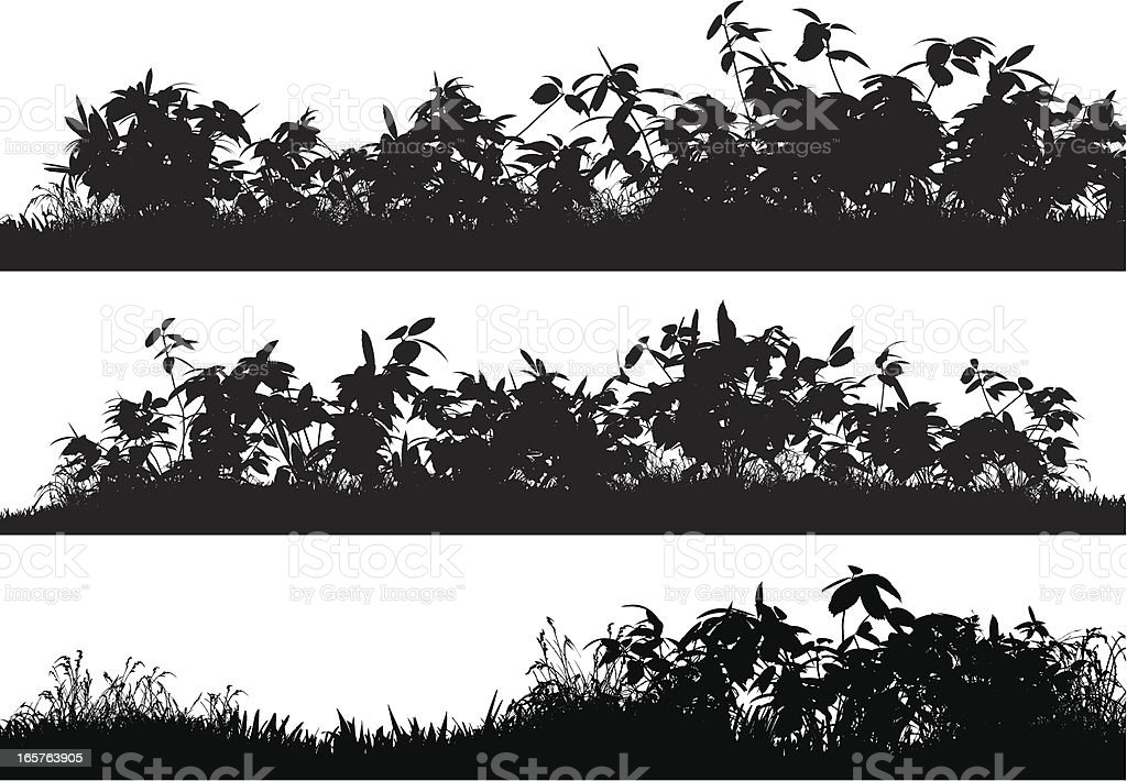 Bushes and Grass vector art illustration