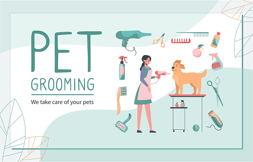 business card for the grooming salon. Illustration of a groomer taking care of the dog, blow-drying and styling. Vector in flat style.