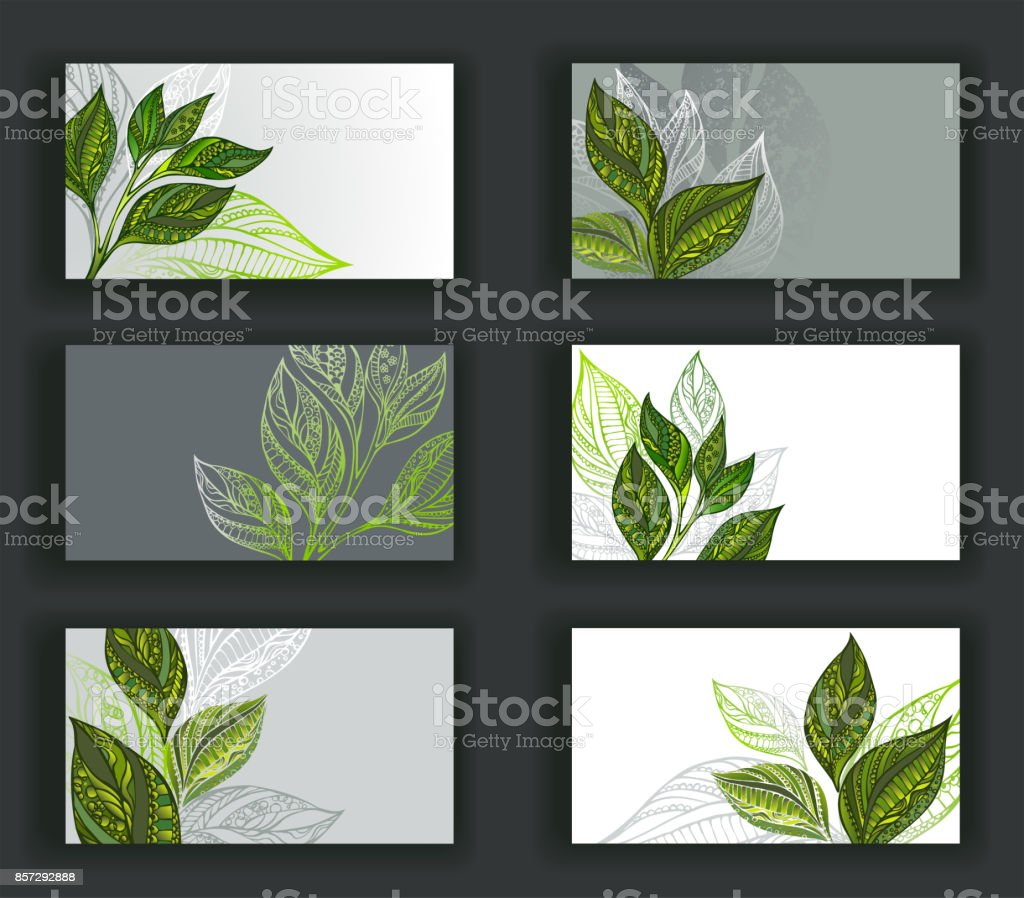 Business cards with tea vector art illustration