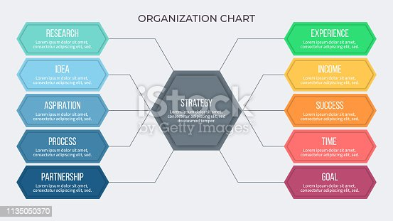 Business infographic. Organization chart with 10 options, hexagons. Vector template.