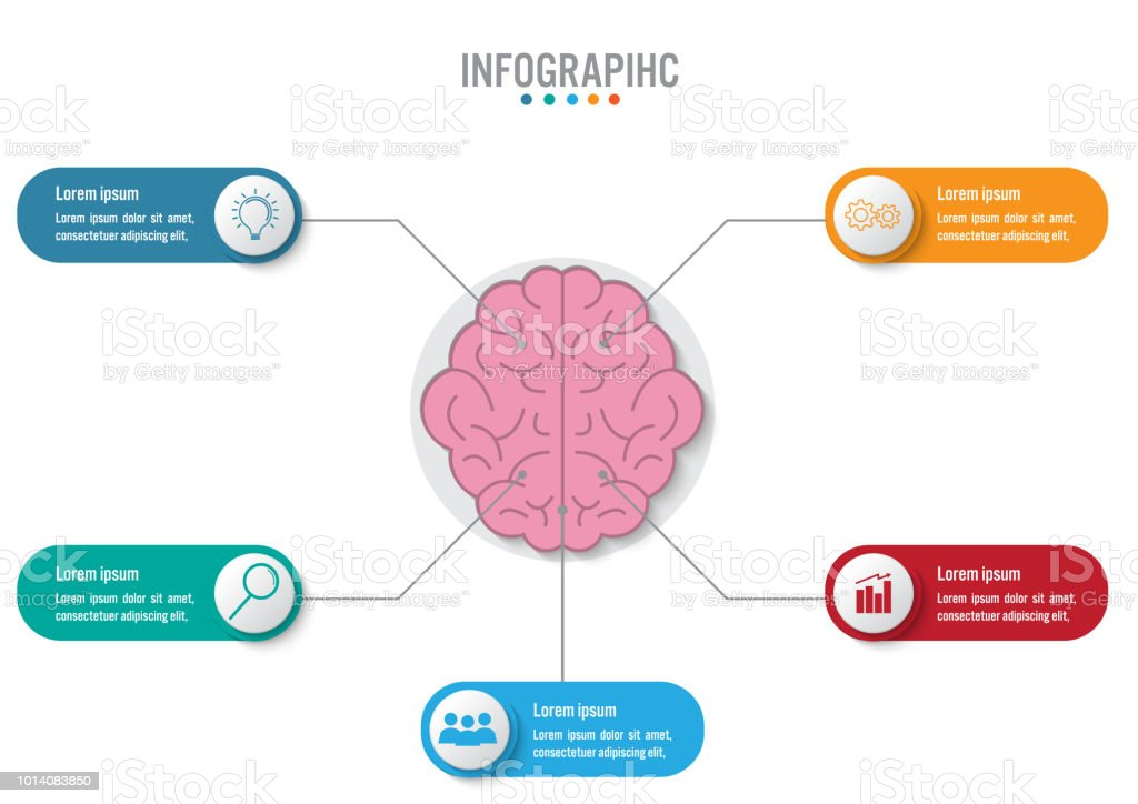 business infographic template with 5 options brain shape abstract vector id1014083850?k=6&m=1014083850&s=612x612&w=0&h=ExLY51V5 k4KJgIrZdzrotJT4aY884Em6PV_D2Jx3Mk= royalty free infographic business head shape template design clip