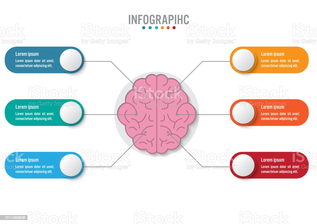 business infographic template with 6 options brain shape abstract vector id1014083836?k=6&m=1014083836&s=612x612&w=0&h=MQbKzelUF335h Xe0spxin Lo07uI3Wgo6rnWXwzIkg= royalty free infographic business head shape template design clip
