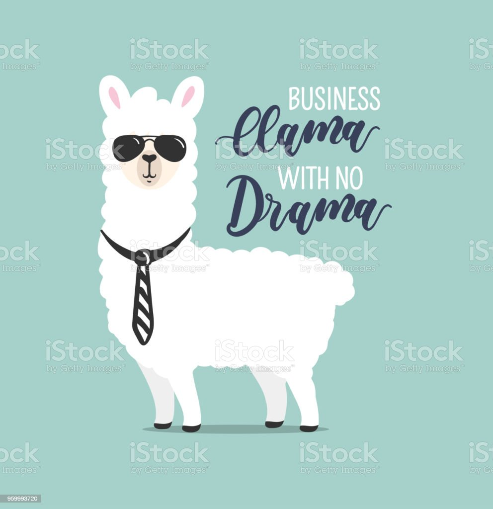 Business Llama with no drama cute card with handrawn alpaca. Greeting card for Boss's day or motivational poster with lettering. Vector illustration. vector art illustration