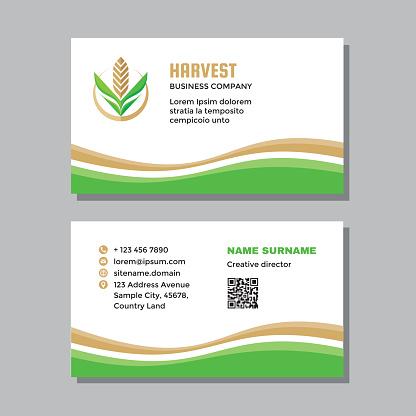Business visit card template concept design. Nature leaves branding. Wheat agriculture sign. Corn symbol. Vector illustration.