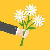 Businessman cartoon character hand holding bunch bouquet of white daisy flowers. Greeting card.  Yellow background. Flat material design.