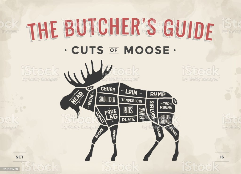 Butcher Diagram Scheme Moose Stock Vector Art & More Images of ...