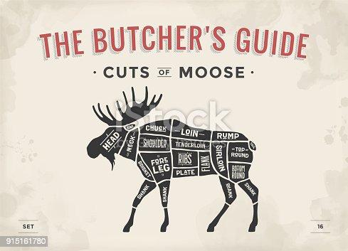 Butcher Diagram Scheme Moose Stock Vector Art More Images Of