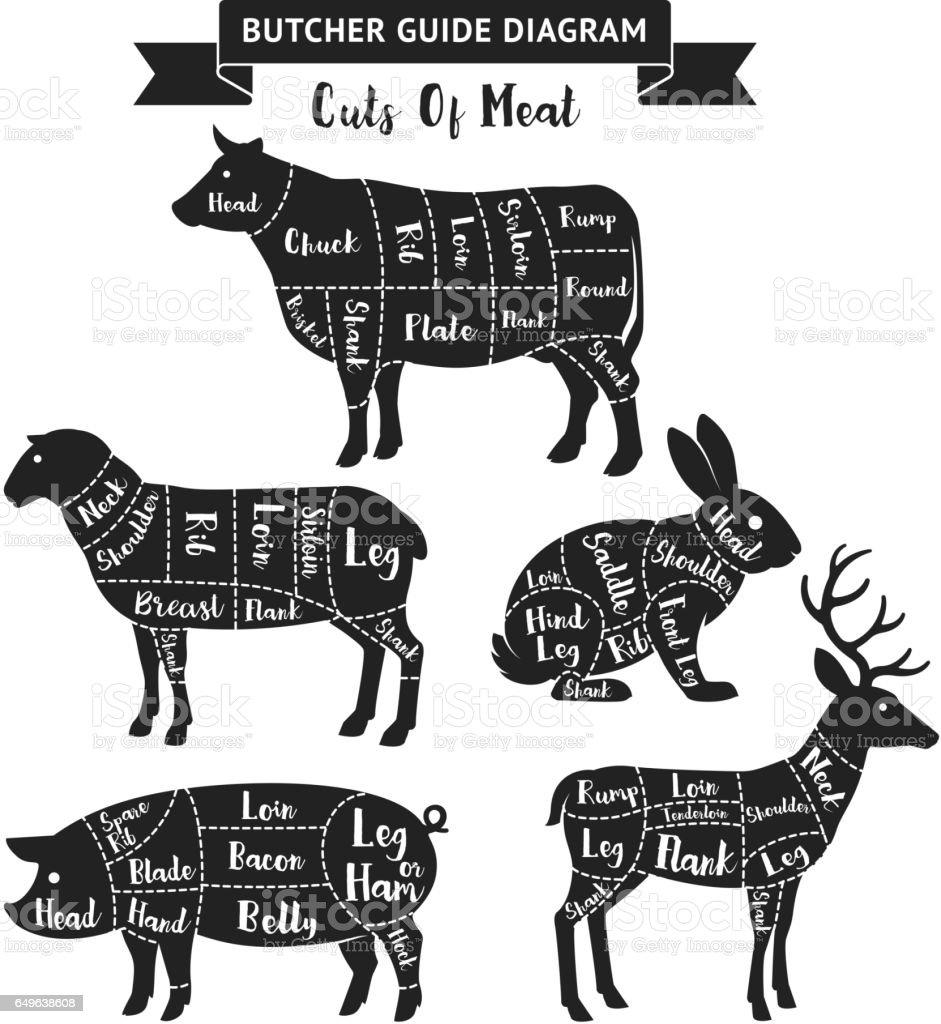 Butcher guide cuts of meat diagram. vector art illustration