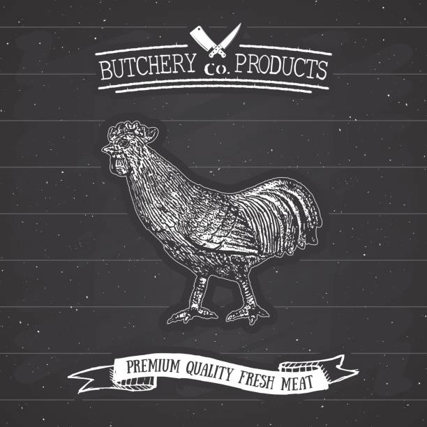 Best Flank Steak Illustrations, Royalty-Free Vector ...