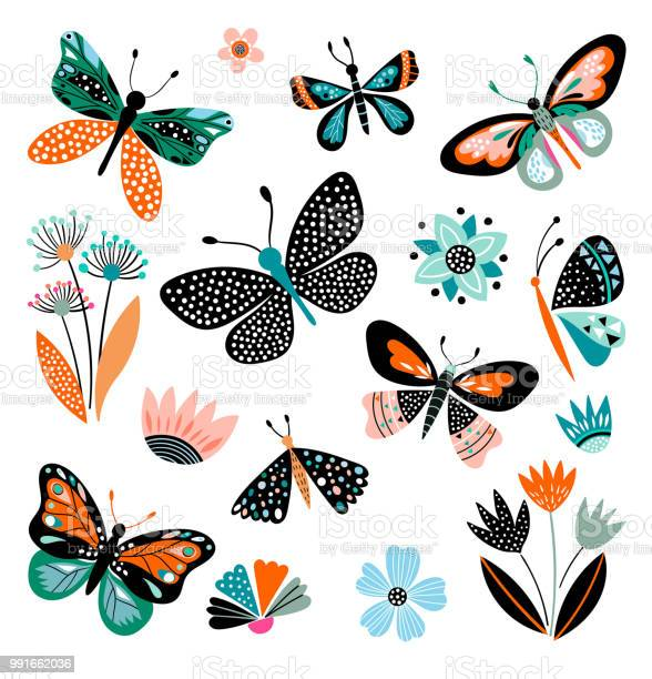 Butterflies and flowers hand drawn collection vector id991662036?b=1&k=6&m=991662036&s=612x612&h=cr4bpjjc4tpjkvhmfzm2y2mudc xrsulryywoohiica=