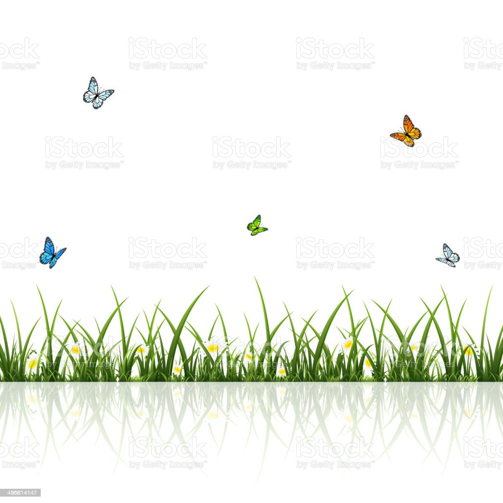 Butterflies and grass royalty-free stock vector art