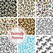 Butterflies and moth seamless patterns set