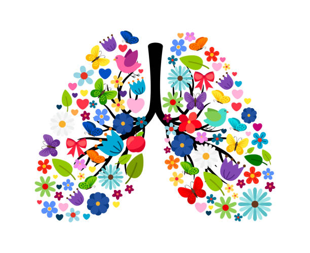 Butterflies and spring flowers in shape of human lungs Butterflies and spring flowers in shape of human lungs. Vector floral flower and color summer artwork illustration inhaling stock illustrations