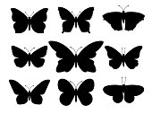 Butterflies silhouettes. Vector spring butterfly silhouette collection isolated on white background