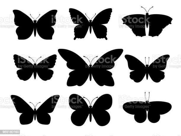 Butterflies black silhouettes vector id959180160?b=1&k=6&m=959180160&s=612x612&h=bp5lnkntssok0rz47ytozcjbjvsimbvt2omgbnwl18s=