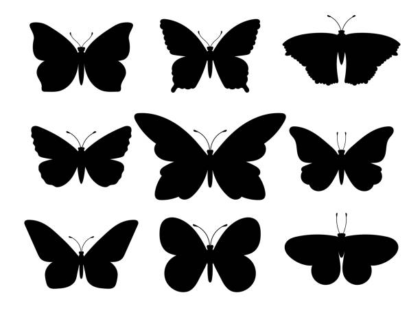 butterflies black silhouettes - butterfly stock illustrations