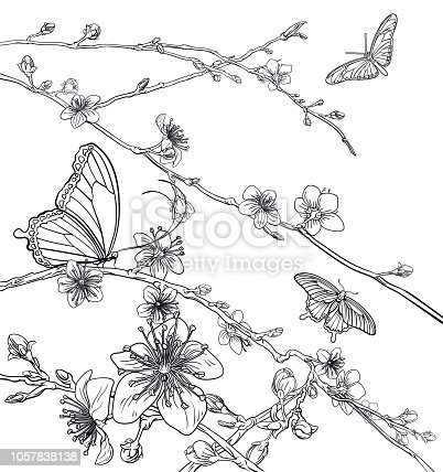 Peach or Cherry blossom flowers tree with butterflies. Spring background pattern abstract Japanese or Chinese style fashion floral design.