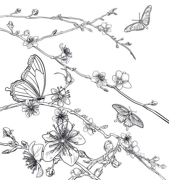 illustrazioni stock, clip art, cartoni animati e icone di tendenza di butterflies cherry peach blossom flowers - farfalla ramo