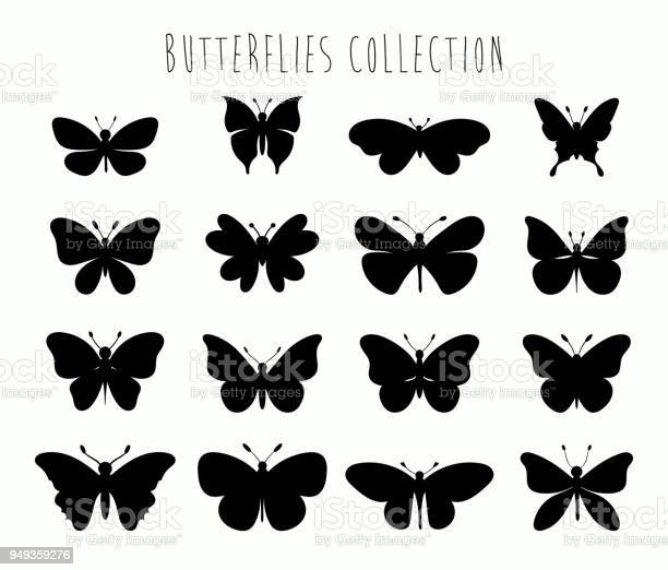 Butterflies collection with different black shapes vector id949359276?b=1&k=6&m=949359276&s=612x612&h=f 2ucrime8l7lrau1ojvx8plkntq gcd48vtr3z e u=