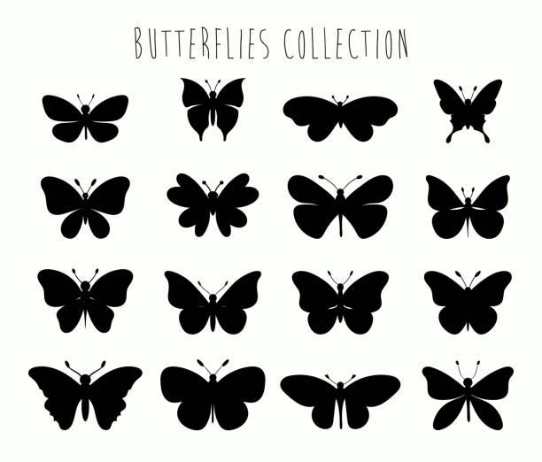 butterflies collection  with different black shapes - butterfly stock illustrations