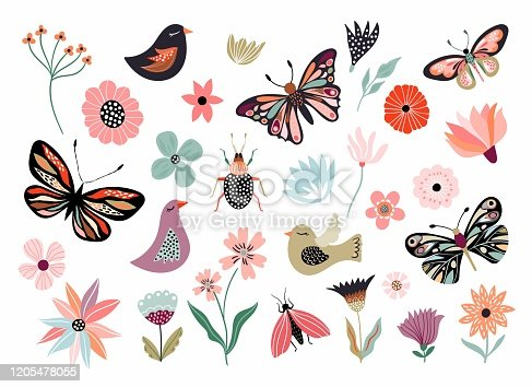 Butterflies, flowers and birds hand drawn collection of different element, isolated on white
