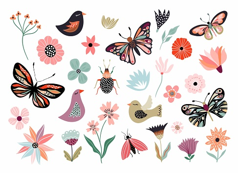 Butterflies, flowers and birds hand drawn collection